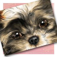 Shih Tzu Puppy Art Cards