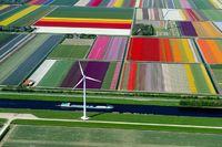 An Aerial Tour of Tulip Fields in the Netherlands. Every year from March to May the Dutch countryside transforms into a sea of color.