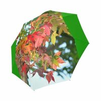 Leaves umbrella Foldable Umbrella $22.86