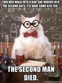 This is a collection of the best of the Chemistry Cat meme, including the original meme so you can add your own annotation.