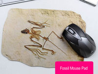 Fossil Pattern Mouse Pad - feelgift.com